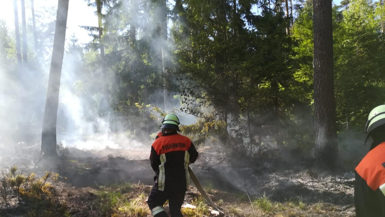 Im Bereich des Jägersees zwischen Röthenbach St. Wolfgang und Feucht brannte es am Sonntag, 30. Mai, im Reichswald.