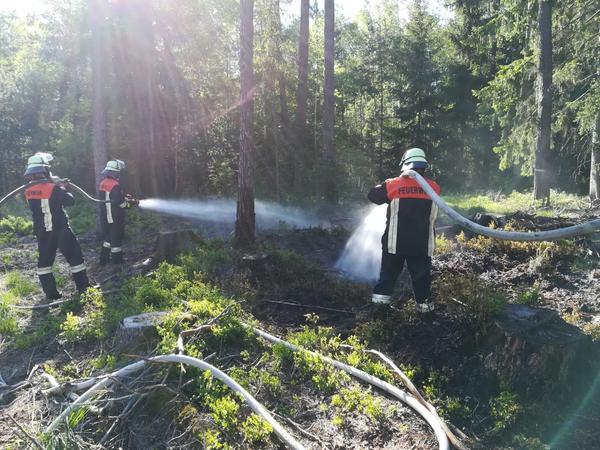 Etwa zwei Stunden lang löschten die Einsatzkräfte, kühlten den Brandort und durchharkten den Waldboden, um alle Brandnester zu ersticken.
