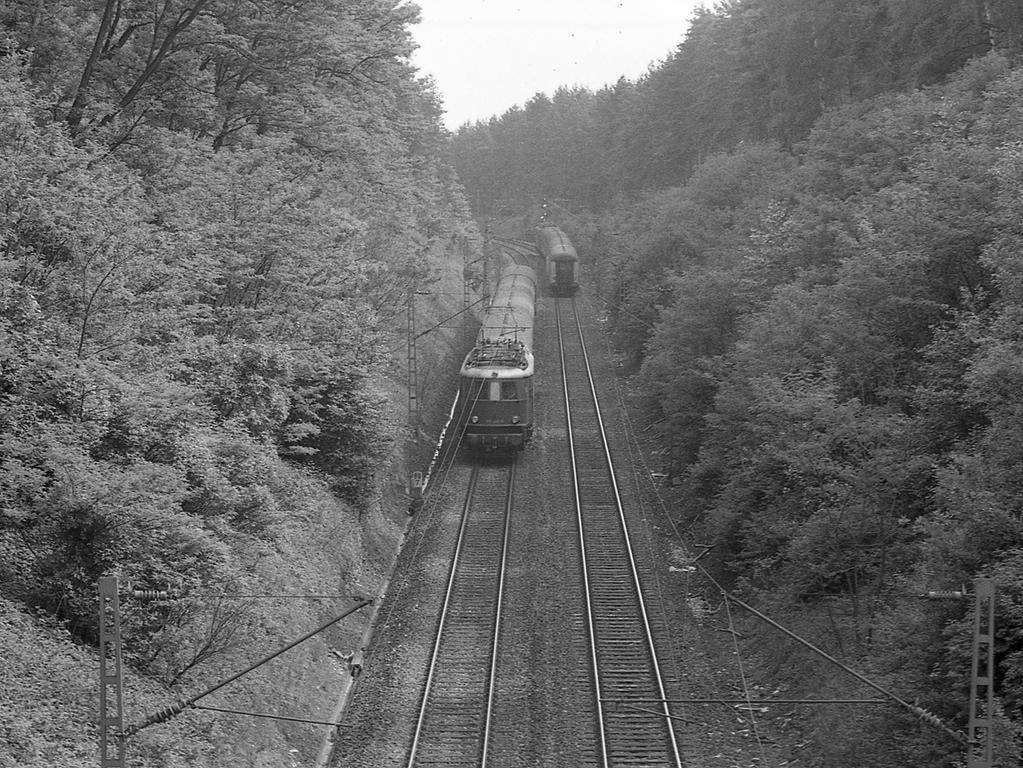 Die stark befahrene Bahnlinie Nürnberg-Regensburg, aufgenommen von der Brücke für die Staatsstraße 2401 von Altenfurt nach Feucht. Die Strecke müßte im Bereich des Truppenübungsplatzes überführt oder untertunnelt werden.
