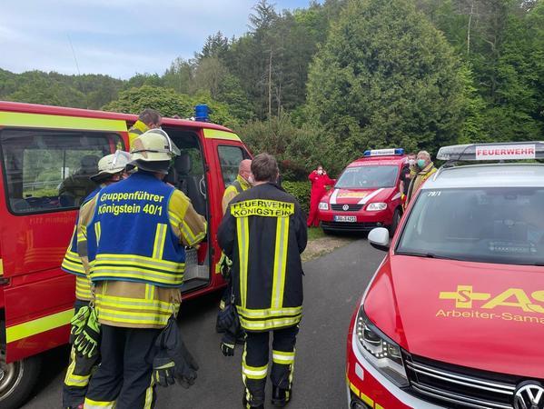 Die Kräfte der Feuerwehr Königstein und die First Responder konnten nach kurzer Zeit wieder abrücken.
