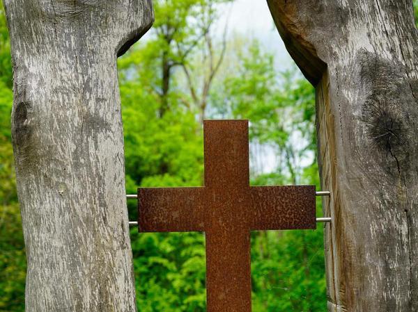 Ein Kreuz zwischen Bäumen: Der Friedwald ist einer von vier in ganz Bayern.