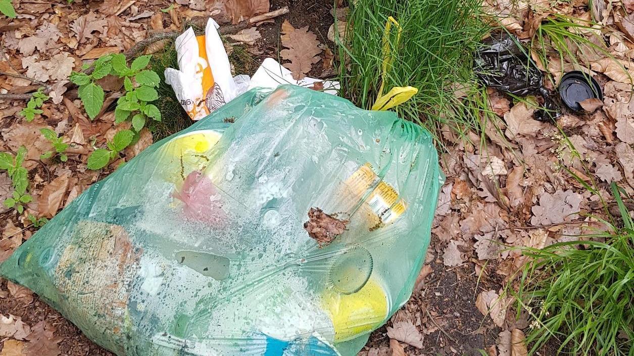Ein hässlicher Anblick: Illegal abgelegter Hausmüll, hier vor einem Müllbehälter am Gunzenhäuser Waldbad.
