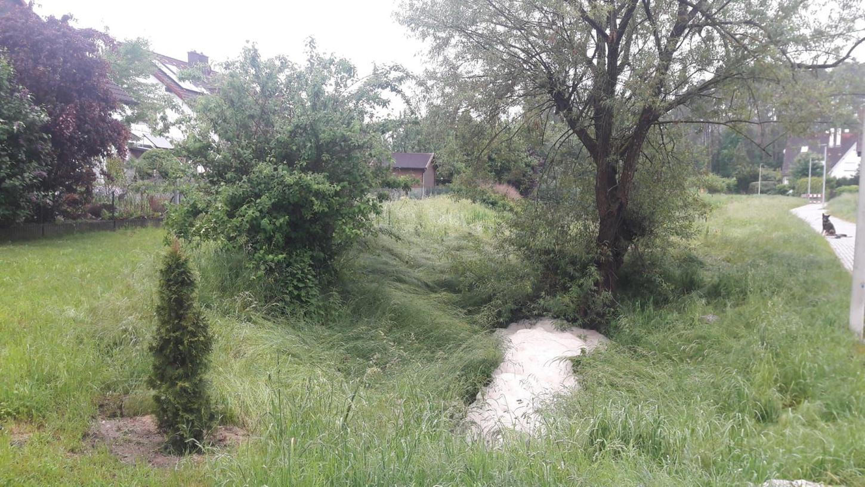 Schaum im Babenbach im Süden Roths. Was war die Ursache?