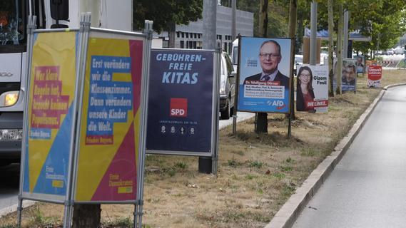 Wahlplakate: Bäume werden in Nürnberg künftig besser geschützt
