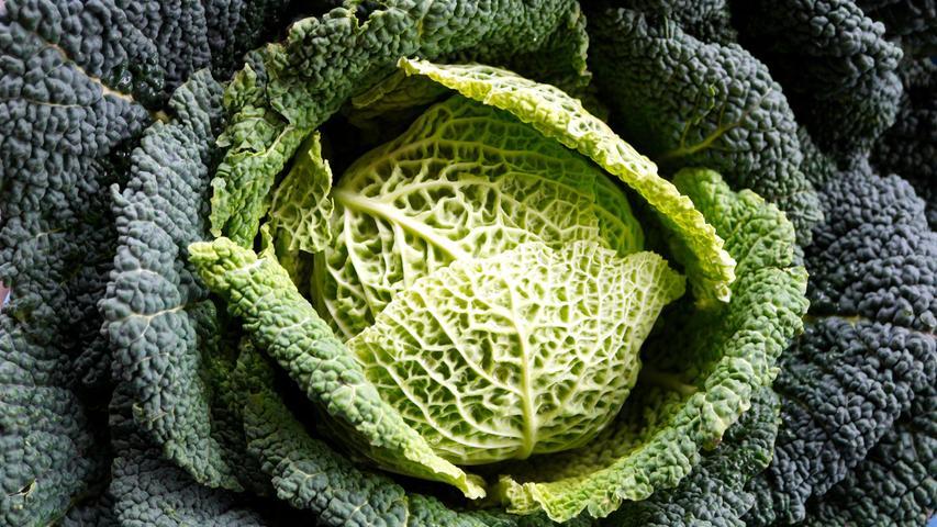 Die Kohlsorte ist wegen seines hohen Wasseranteils kalorienarm und liefert gleichzeitig viele Nährstoffe wie Vitamin C und E sowie pflanzliches Eiweiß. Daneben enthält Wirsing sekundäre Pflanzenstoffe.