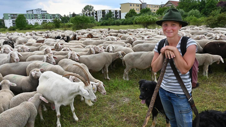 600 Schafe und 20 Ziegen betreut die 25-jährige Schäferin Luisa Belz. Im Naturschutzgebiet Exerzierplatz unterstützt sie den Landschaftspflegeverband.