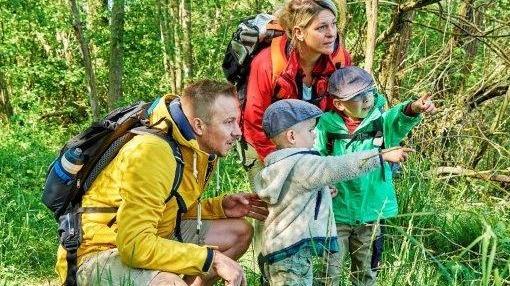 Im Naturpark Steigerwald gibt es viel zu entdecken, kompakt am Festwochenende zu dessen 50-jährigem Bestehen.