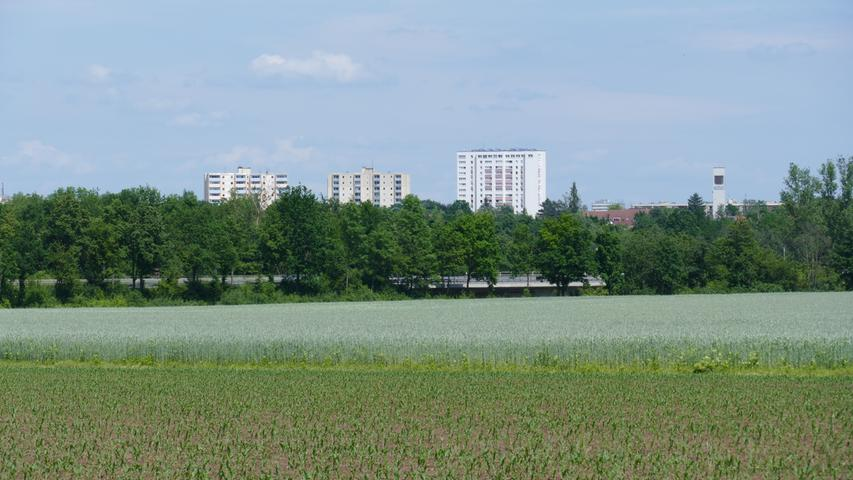 Ein Blick vom Oberfürberger Waldrand über die Felder Richtung Hardhöhe, aus der die Hochhäuser und der Kirchturm von Heilig Geist ragen.