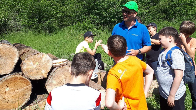Den Ausflug in den Schulwald erlebten die Fünftklässler der Treuchtlinger Senefelder-Schule als einen besonderen Tag: Der Schulbetrieb kann wieder in gewohnter Weise ablaufen.
