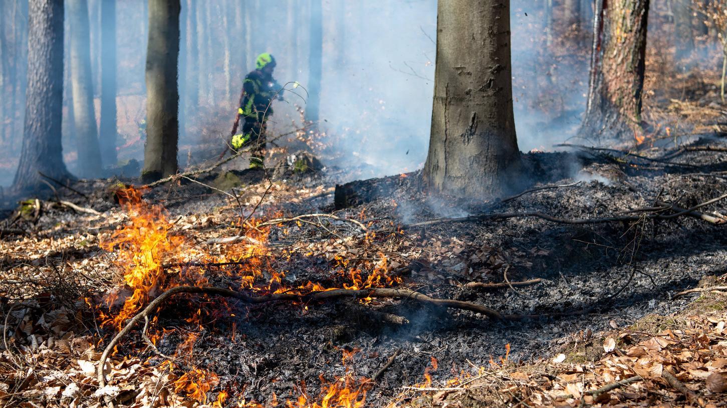 Die aktuelle Trockenheit ist eine Gefahr, auch wenn das Brandgeschehen meist sehr schnell gelöscht werden kann. (Symbolbild)
