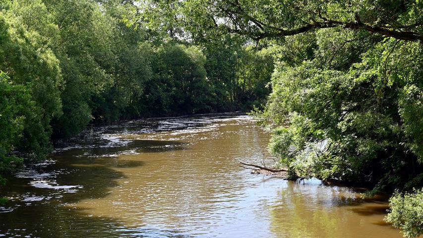 Die Regenfälle der letzten Wochen ließen den Pegel der Regnitz steigen, das Wasser ist schlammig braun.