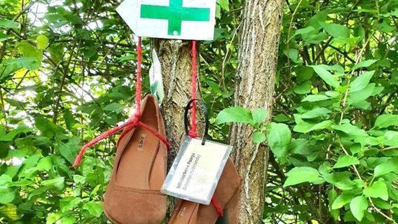 Betzensteiner Frauenschuh-Wanderweg Opfer von Vandalen