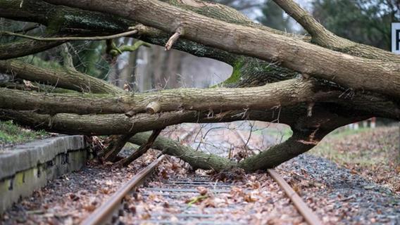 Bahn stellt sich auf mehr Extremwetter ein