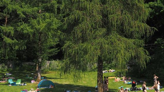 800 Gäste im Betzensteiner Freibad