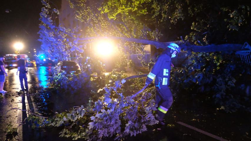 Umgestürzte Bäume und Blitzeinschläge: Schäden nach starken Gewittern in der Region