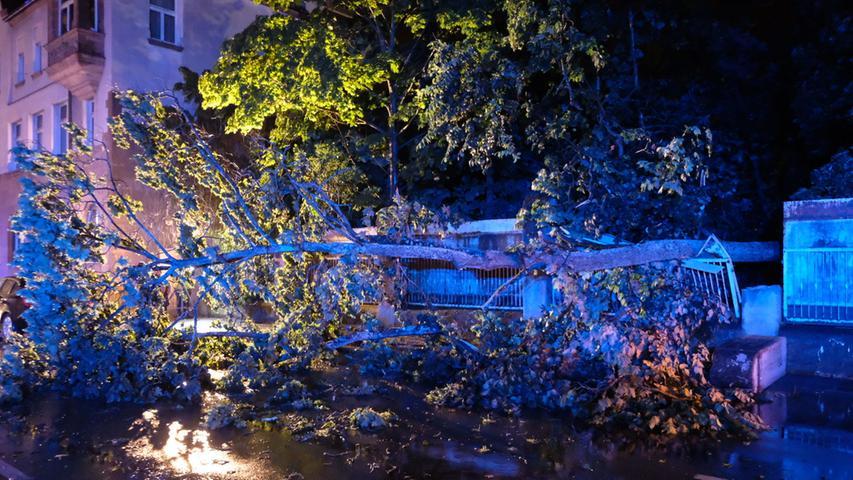Durch das Unwetter wurde in der Laufamholzstraße in Nürnberg ein Baum auf die Fahrbahn gedrückt, der dabei auch ein Stromkabel mit sich riss.