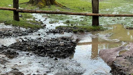 Wildpark unter Wasser: Schwere Schäden durch Unwetter