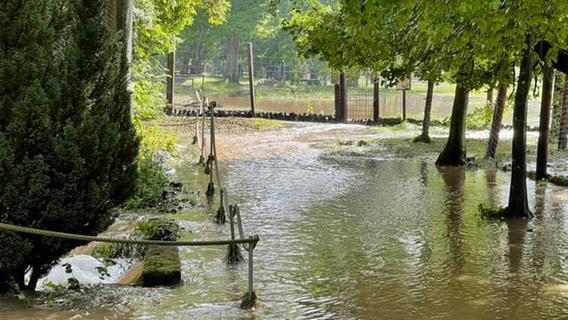 Nach Unwetter: Wildpark Schloss Tambach unter Wasser