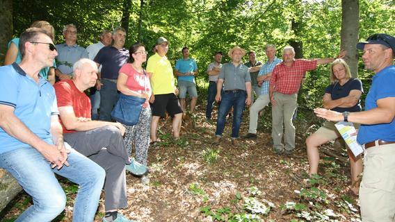 Wie kann der Treuchtlinger Forst zukunftsfest gemacht werden?