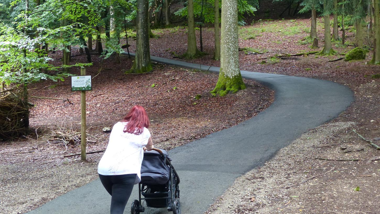 Viele Wege im Wildpark Hundshaupten sind so steil, dass das Schieben eines Kinderwagens sehr anstrengend ist. Für Menschen mit einer Bewegungseinschränkung sind sie kaum passierbar.