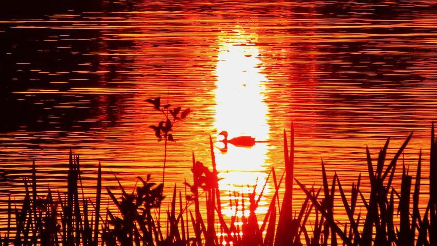 Sonnenuntergang am Dechsendorfer Weiher.