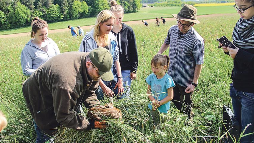 Familie Gänsebauer kümmert sich um die Rehkitze.