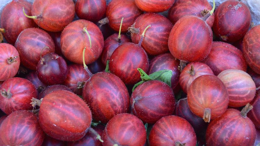 Stachelbeerenenthalten Vitamin C. Auch Vitamine der B-Gruppe stecken in den Beeren. Die B-Vitamine haben wichtige Funktionen im Stoffwechsel. An Mineralien sind zum Beispiel Kalium, Kalzium und Magnesium enthalten.