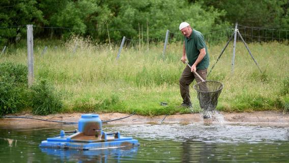 Wasserknappheit: Büchenbacher Fischzüchter plant um