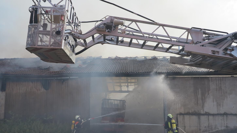 Scheune brannte in Heidenheim: Kälber verendeten, hoher Sachschaden