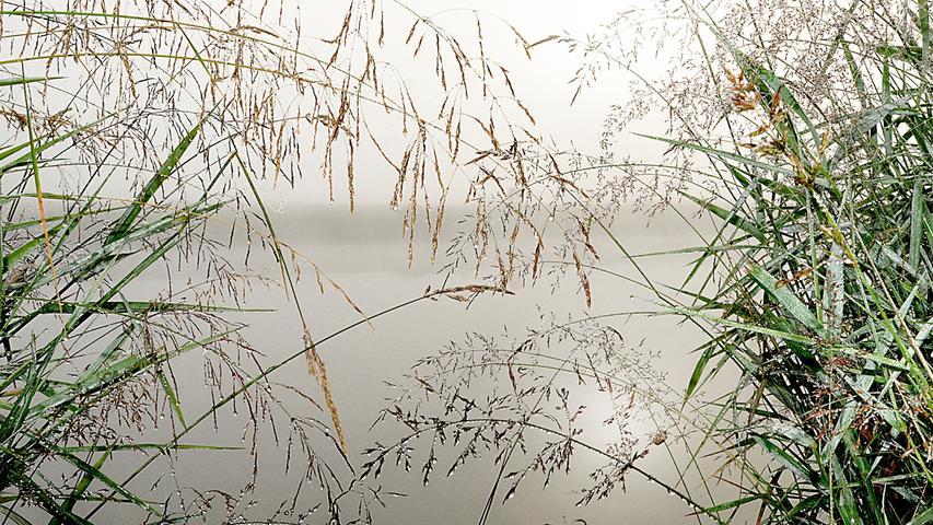 Wie im Herbst sah es am Morgen nach dem Regen am Main-Donau-Kanal bei Katzwang aus.