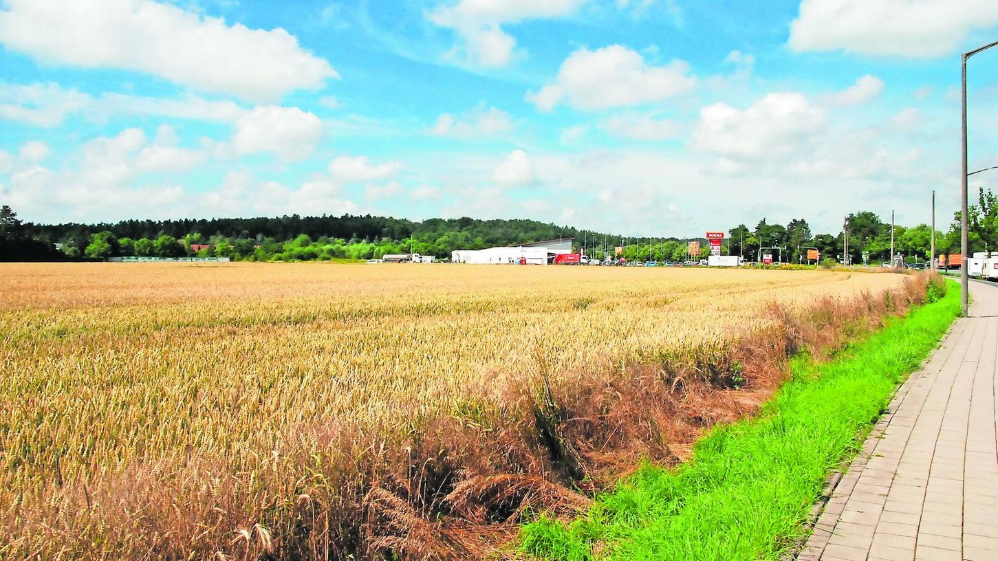Wo heute noch Getreide sprießt, sollen ab Herbst des nächsten Jahres Wohnhäuser in die Höhe wachsen. Im Hintergrund ist das bereits bestehende Nahversorgungszentrum an der Breslauer Straße zu erkennen.