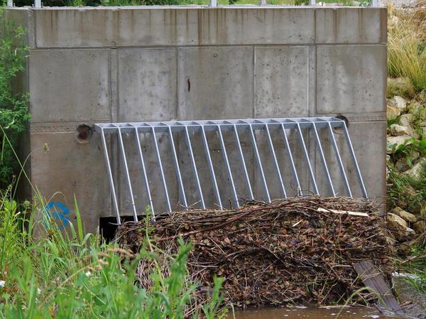 Beim neuen Damm bei Unterulsenbach soll vielleicht nachgebessert werden.