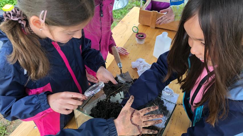 Was versteckt sich alles in der Erde? Einige Schülerinnen untersuchen frischen Kompost, spüren Regenwürmer auf und untersuchen sie anschließend mit der Lupe.
