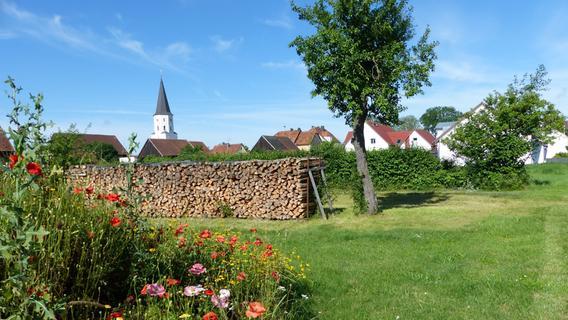 Stadtplaner präsentiert Rat Ideen zur Nachverdichtung in Berngau