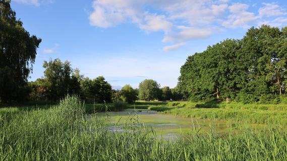 Weihersanierung in Röttenbach - ein Faß ohne Boden?