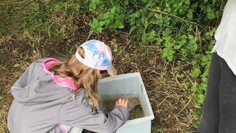 Forschen, fast wie die Profis. Hier werden kleine Wassertierchen untersucht.
