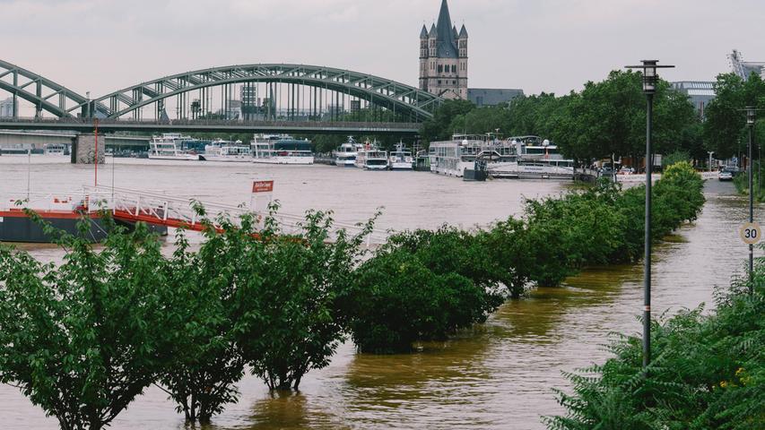 Auch in Köln steht das Wasser des Rheins extrem hoch.