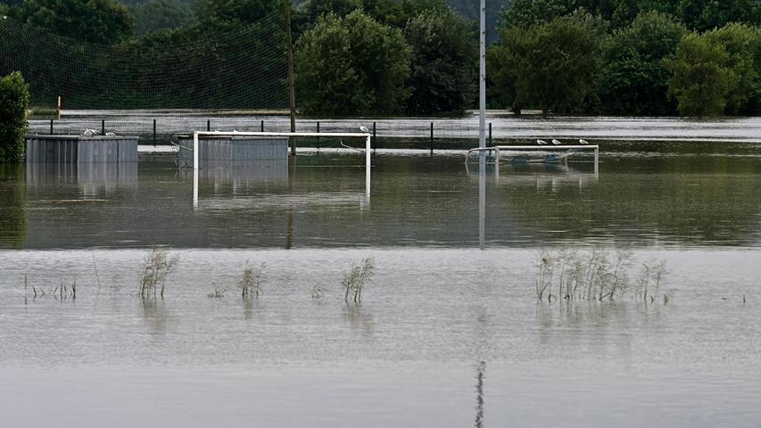 Der Fluss führt auch hier extrem viel Wasser.