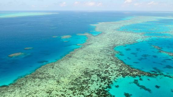 Unesco in Sorge: Great Barrier Reef soll als