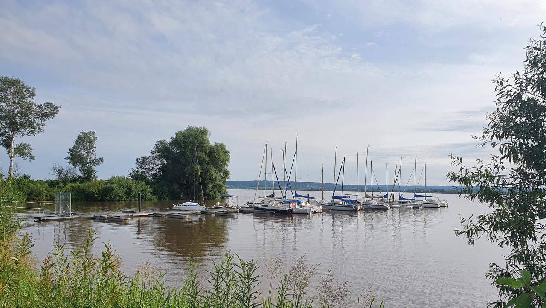 Der Blick auf den Altmühlsee vom Walder Ufer aus: Es gilt ab sofort eine Badewarnung für den ganzen See. Eingeschlossen ist auch der Abenteuerspielplatz in Wald.