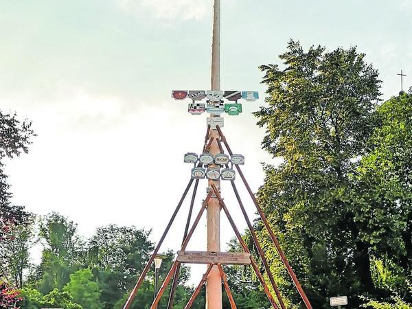 Stattliche 27 Meter misst der Troschenreuther Kirchweibaum.