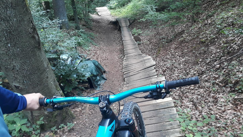 """Dem """"Diavolo Snake Trail"""" als Königstour der Neumarkter Mountainbike-Strecken steht eine teure Aufwertung bevor."""