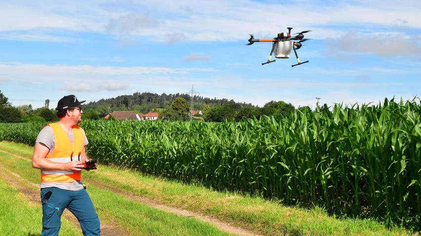 Kampf gegen Schädlinge: Drohnen werfen winzige Biowaffen über Feldern ab