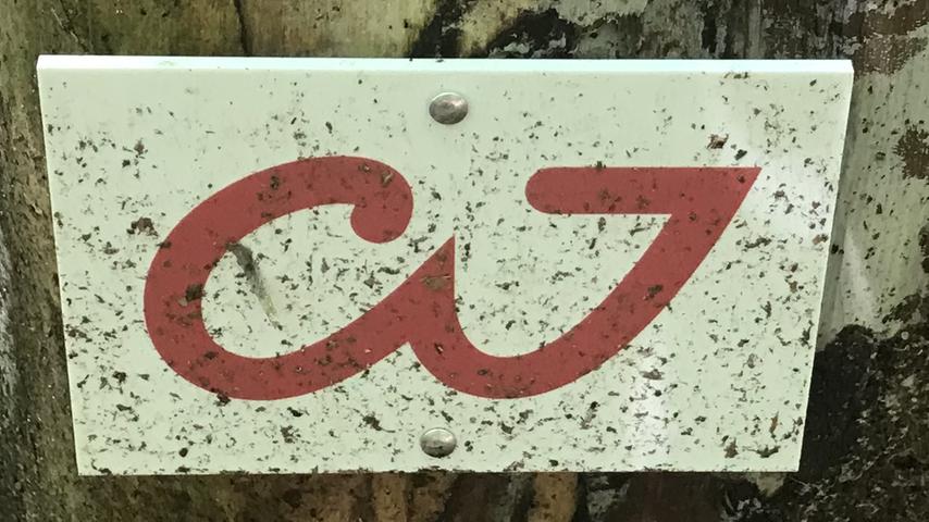 Alle rätseln: Was bedeutet dieses Zeichen, das an mehreren Stellen in Nürnberg auftaucht?Foto: Christine Thurner
