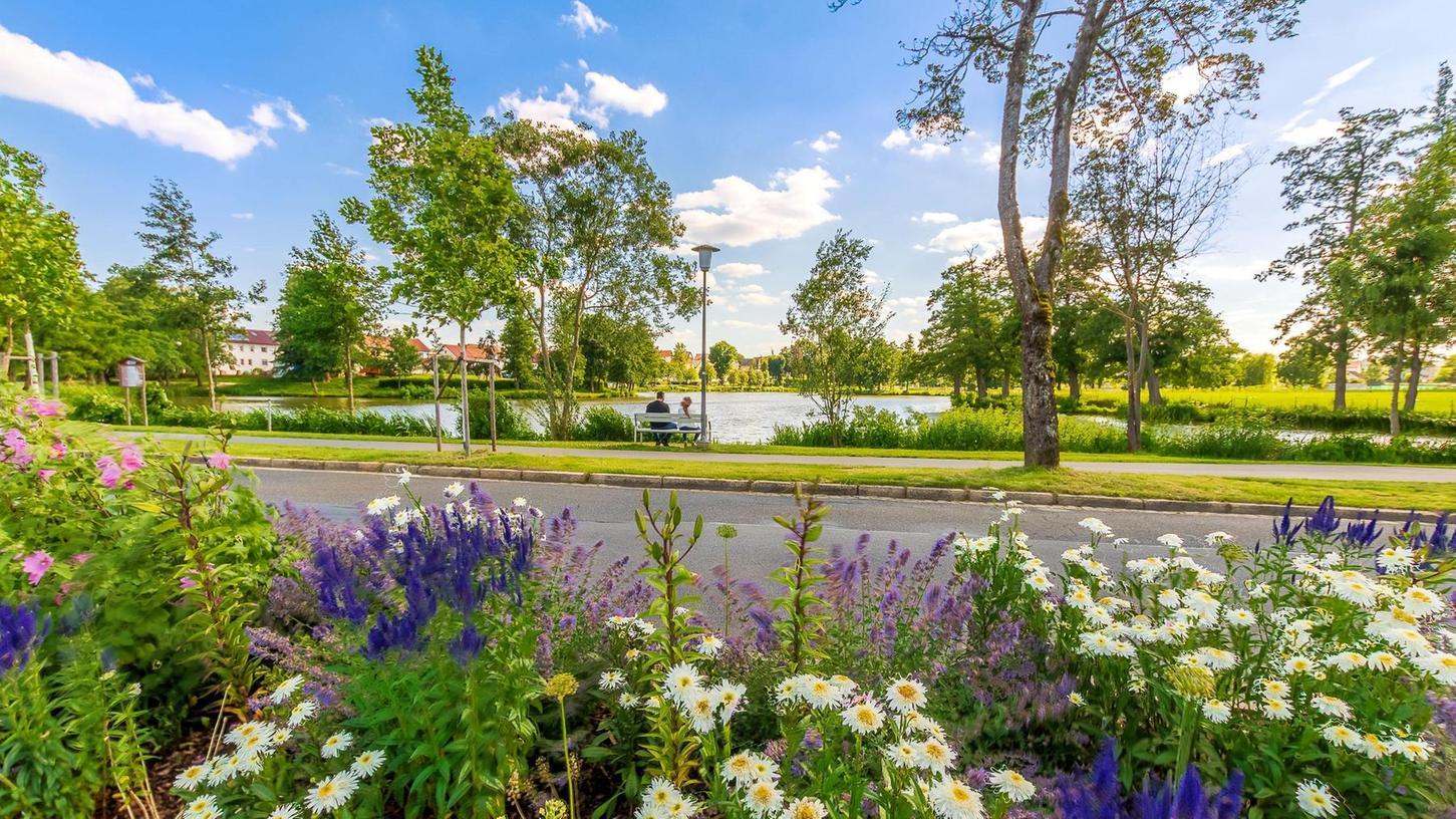Es blüht schon jetzt herrlich bunt rund um den Auerbacher Stadtweiher. Sollte die Stadt mit ihrer Bewerbung um die Landesgartenschau Erfolg haben, soll dieser Bereich noch attraktiver werden.