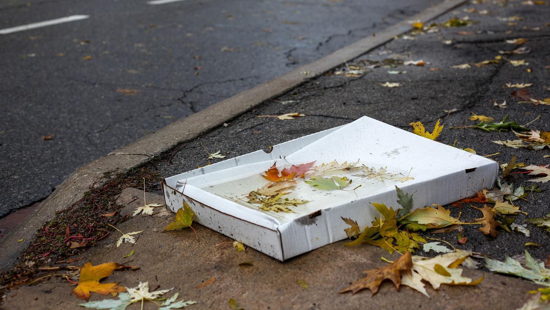 Solche Müll-Sünden sieht man leider viel zu oft: Am Fahrbandrand entsorgte Pizzaschachtel.