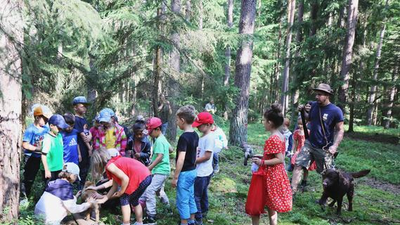 Mit dem Jagdpächter zur Erlebniswoche im Wald