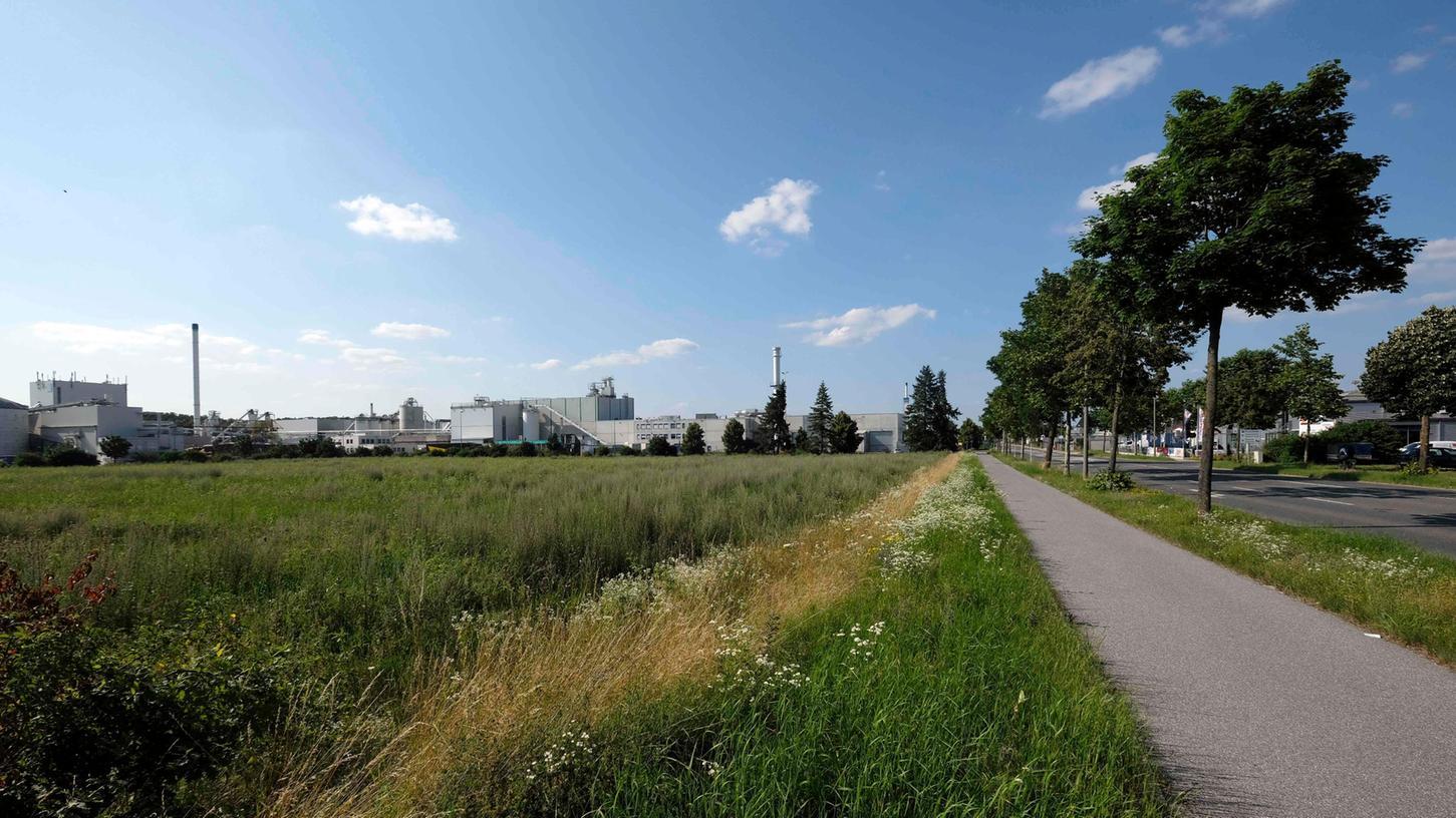 Mit dem freien Feld zwischen Dreichlingerstraße und B8 hat Pfleiderer Pläne.