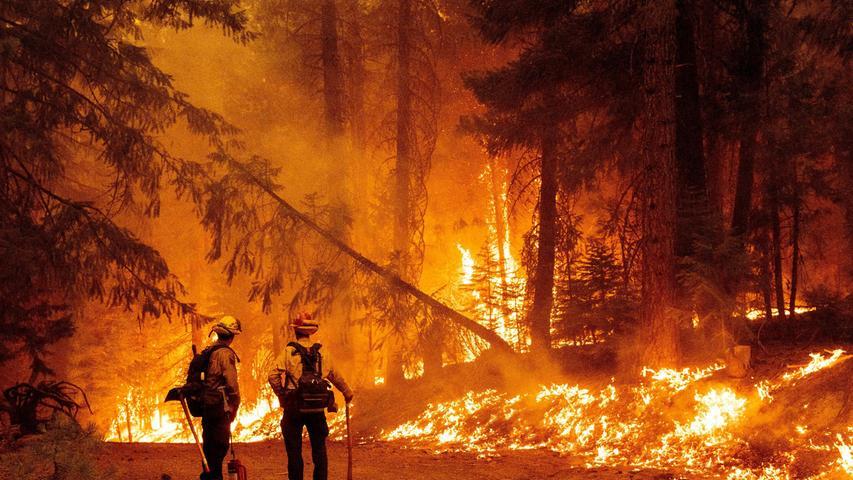 Im US-Bundesstaat Kalifornien kämpfen tausende Feuerwehrleute gegen einen riesigen Waldbrand. Die Flammen schlagen so hoch, dass sie Meteorologen zufolge eigene Wolken formen, die sogar Blitze erzeugen könnten. Gewitter und starke Winde, die ebenfalls durch die Feuerwolken ausgelöst werden, könnten den Brand weiter anheizen. Ursache des Feuers ist ersten Untersuchungen zufolge ein Baum, der auf eine Stromleitung gekippt war.