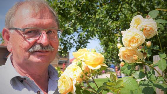 Praktische Tipps: So blüht und gedeiht Ihr Rosengarten prächtig